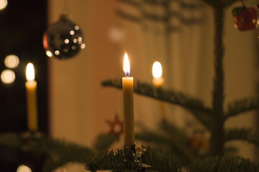 beeswax candles on a christmas tree