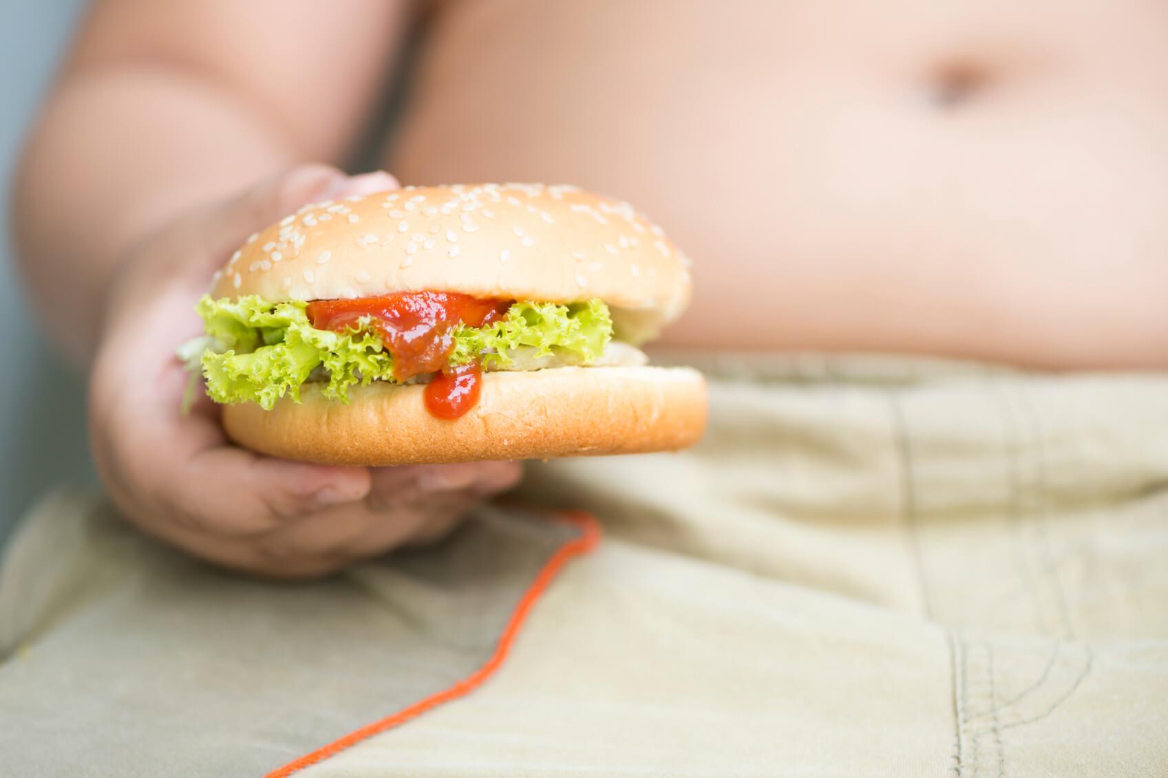 chicken cheese Hamburger on obese fat boy hand
