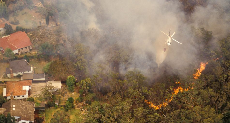 Bushfire protection: Safety tips – Insurance Solved Blog  Budget Direct