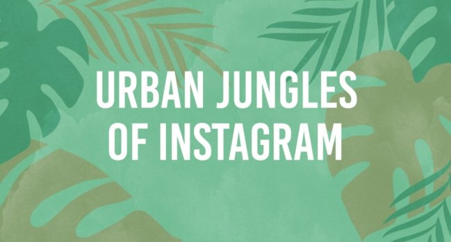 Header_Urban-Jungles